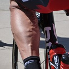 Medium hincapy leg
